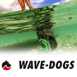 News Wave-Dogs