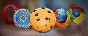 web cookie